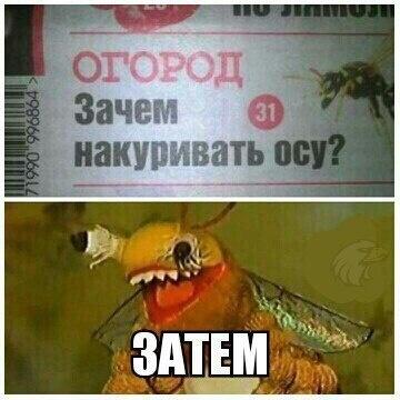 http://www.siapress.ru/images/news/2017/05/11/2017_05_11_024418.jpg