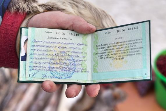 Ольга Корниенко: Год под знаком медведя