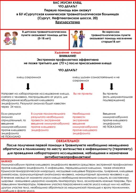 Анастасия Якупова: Чешские ученые намерены лечить клещевой энцефалит «Арбидолом». Это бред или прорыв?
