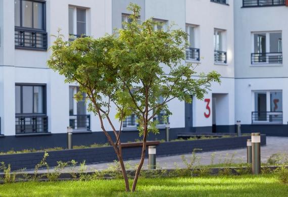 Двор в квартале «Новин»