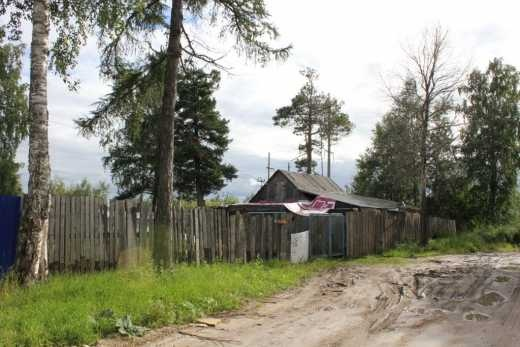 Географический словарь. Видимые лишения и невидимая опасность Кедрового