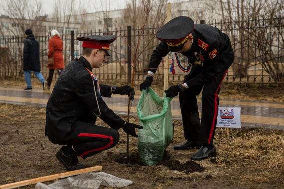 Выпускники-отличники посадили яблони в сургутском сквере // ФОТО