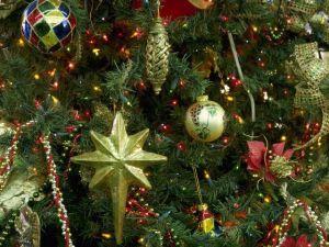 Британские ученые вывели формулу совершенной новогодней елки. новый год, новогодняя елка, праздник, new year