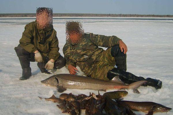 видео рыбалка осетровых пород