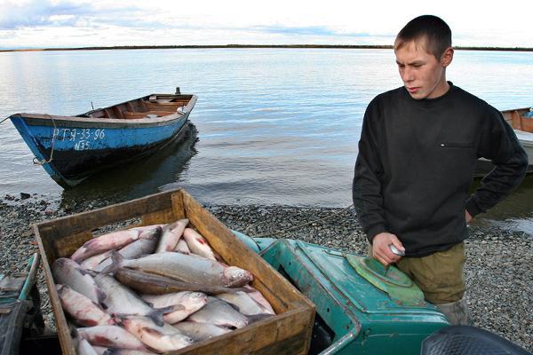 минсельхоз запрет на рыбалку